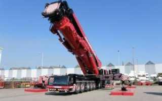 Cамые большие автокраны в мире — описание ТОП-5, видео и фото кранов