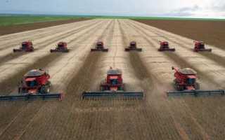 Комбайны зерноуборочные Палессе — модели, характеристики