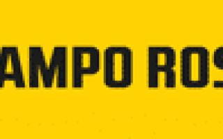 Обзор финских комбайнов Сампо (Sampo): серии, технические характеристики, фото и видео