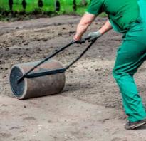Зачем нужно готовить почву под газон